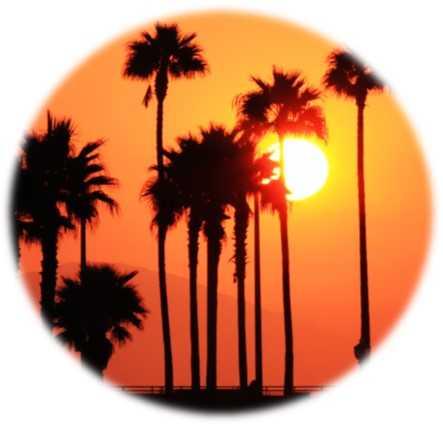 massage-californien-domicile